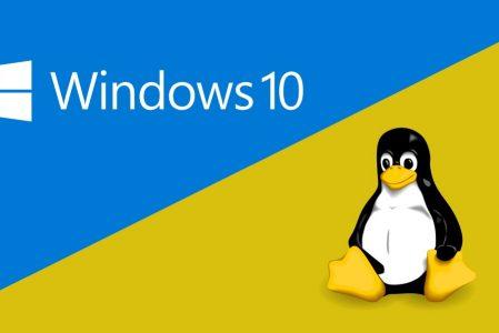 DirectX su Linux?